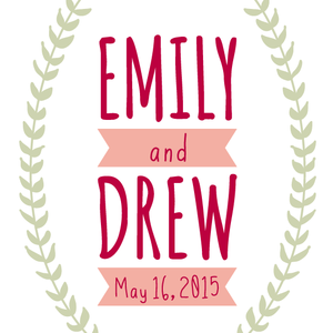 Emily & Drew Wedding Registry